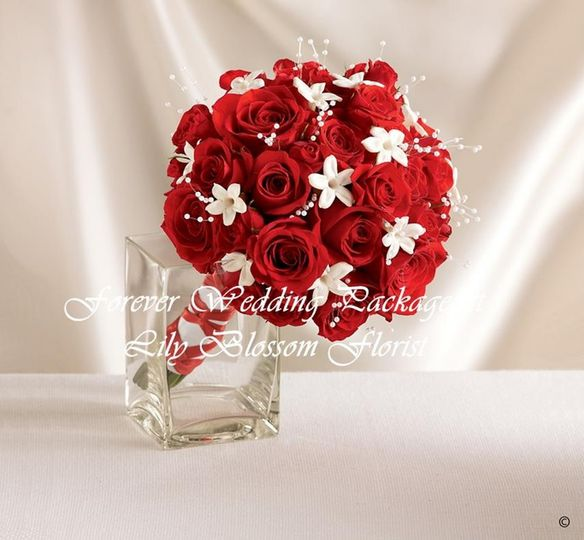Dazzling Red Rose & Stephanoti