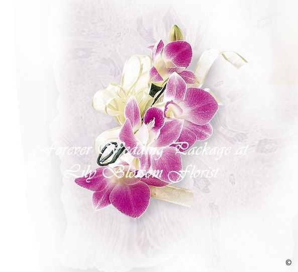 Deep Purple Orchid Corsage