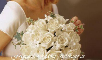 Lily Blossom Florist 1