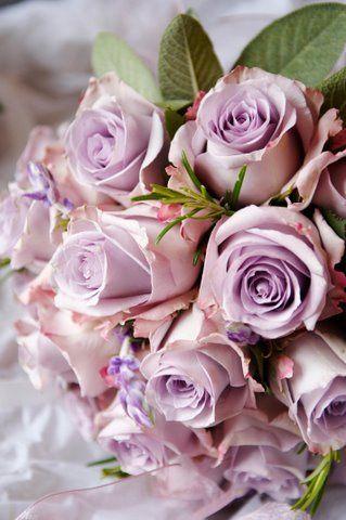 Lilac vintage rose