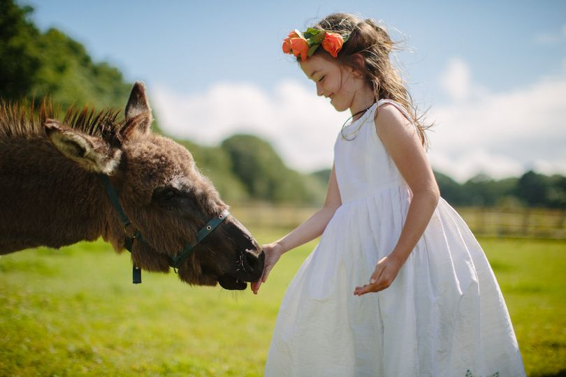 Flower girl and farm animals
