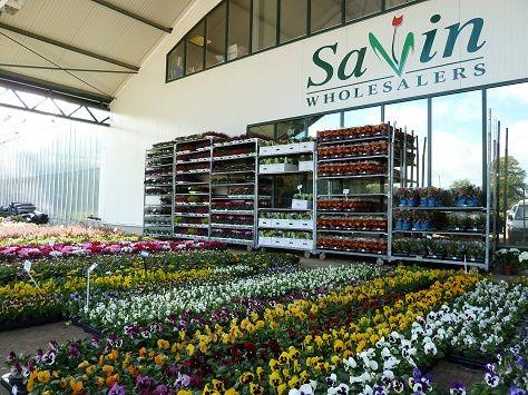 Savin Wholesalers