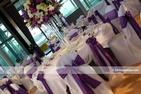 Divine Designs Chair Covers