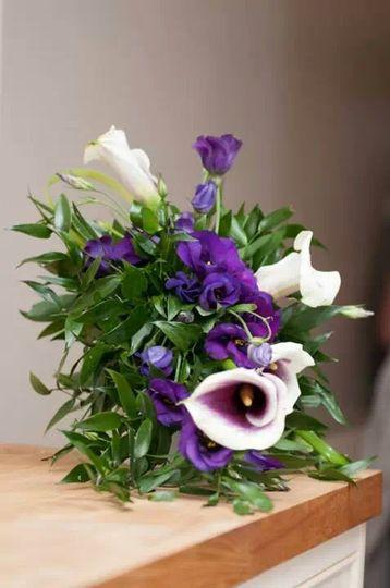 Vibrant purples