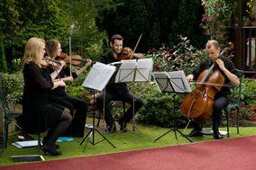 The Dmitri Quartet