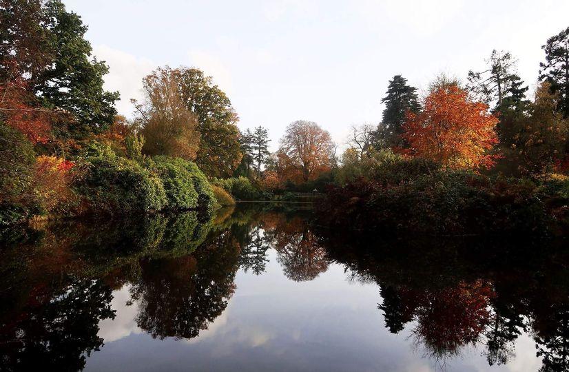 Fish Pond Lake