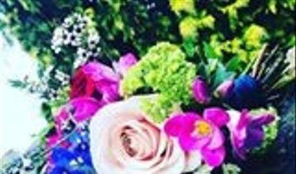 Errismore Flowers