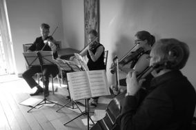 Sonore String Quartet