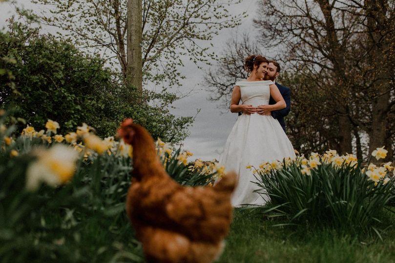 Chicken photobomb!