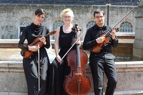 The Unity String Quartet