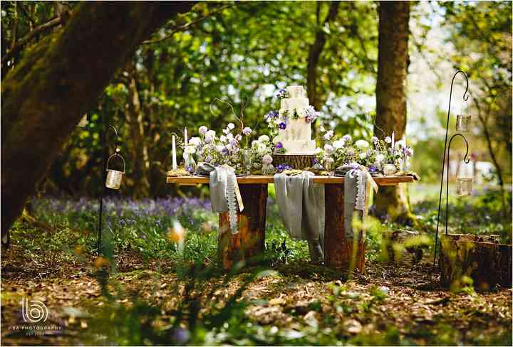 Field & Forest Weddings