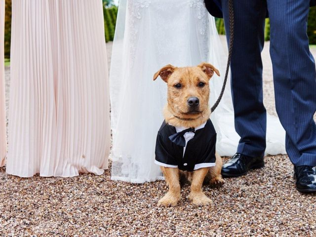 How to Include Your Pet in Your Wedding