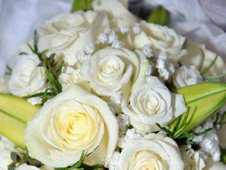Passion Flowers Doncaster 1
