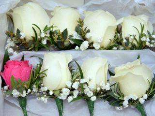 Passion Flowers Doncaster 2
