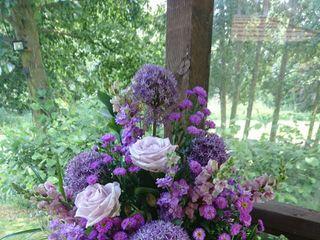 Origins Floral 3