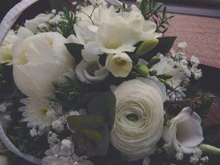 Woodlawn Flowers 5