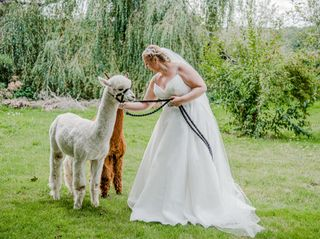 Nadine & Phil's wedding